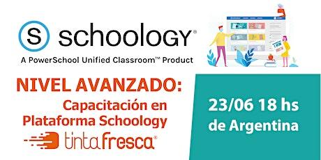 Capacitación en Plataforma Schoology - NIVEL AVANZADO entradas