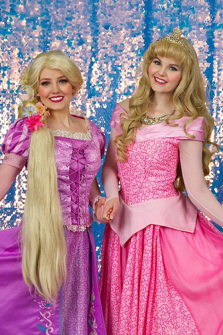 Minneapolis VIP Princess Party image