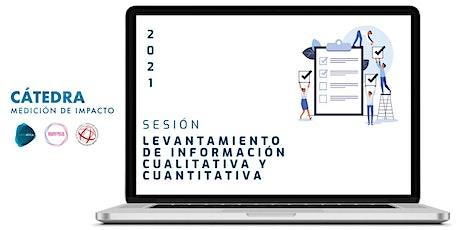 Sesión 4. Cátedra de Medición de Impacto. Levantamiento de información entradas