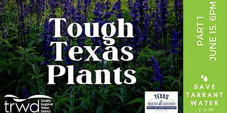Tough Texas Plants: Part 1 tickets