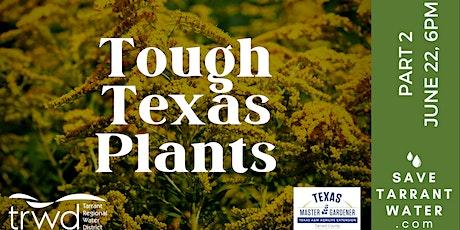 Tough Texas Plants: Part 2 tickets
