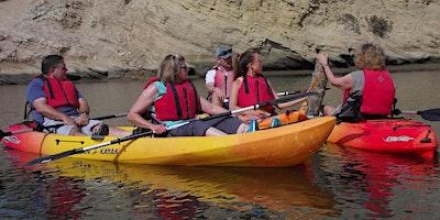 Discover Upper Newport Bay Kayak Tour