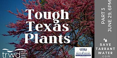Tough Texas Plants: Part 3 tickets