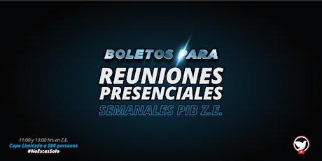 Reuniones Presenciales Zona Esmeralda (20 junio 2021) boletos