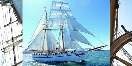 Maritime Heritage Sail, brigantine Matthew Turner tickets