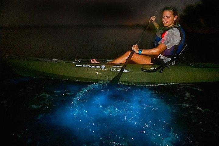 Bioluminescence Paddle image