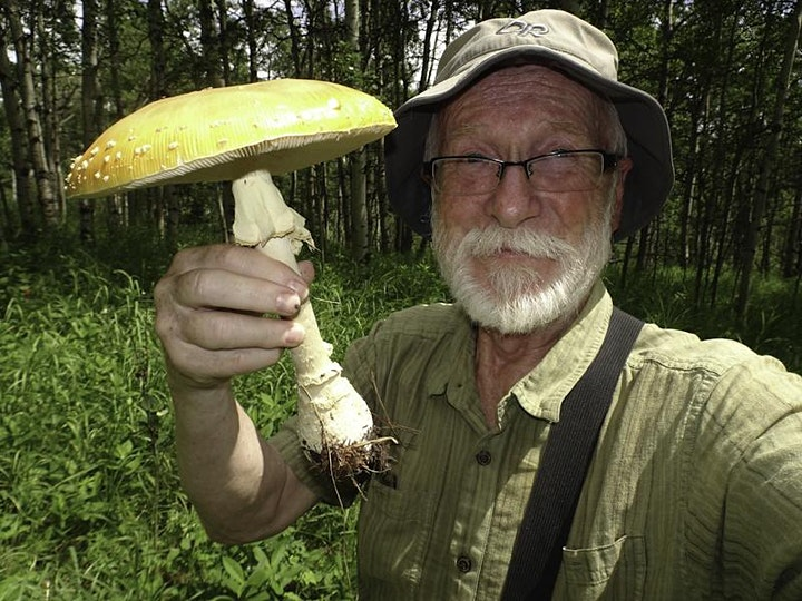 Fungi  In Your Backyard with Karel Bergmann image