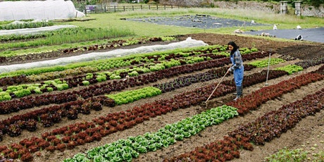 Soul Farm organic farming trip tickets