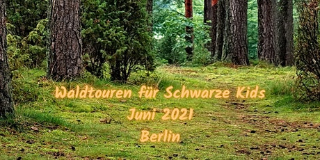 Waldtouren 2021 tickets