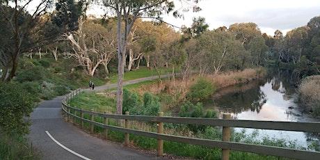 Guided Walk thru Park 11, including Mistletoe  Park & the Botanic Garden tickets