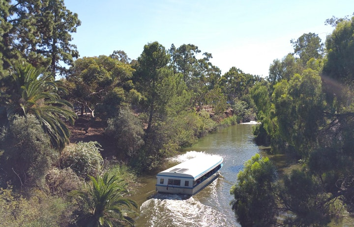Guided Walk thru Park 11, including Mistletoe  Park & the Botanic Garden image