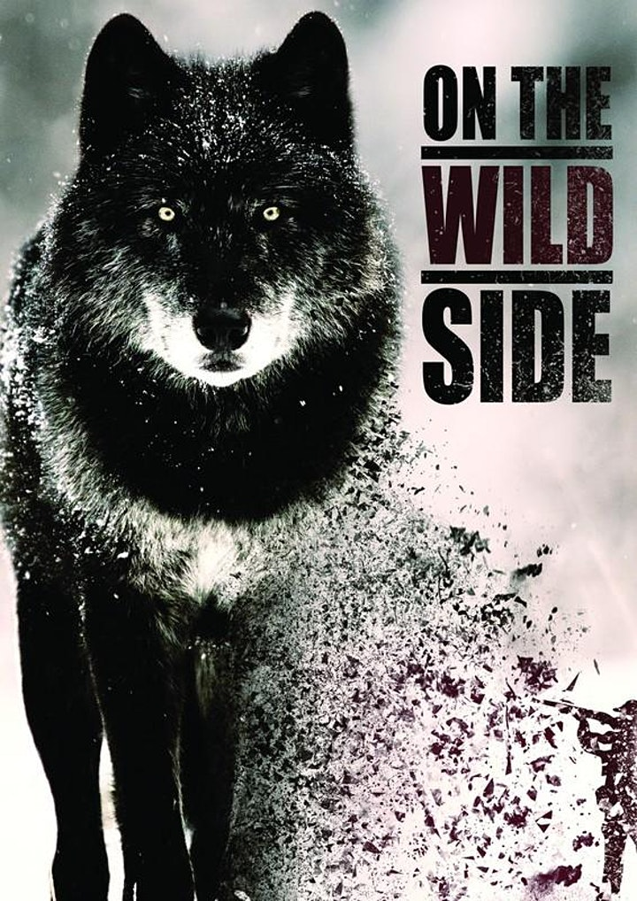Imagen de XIV ECOZINE FILM FESTIVAL.SECCIÓN OFICIAL 18. On the Wild Side 2019. 19:30