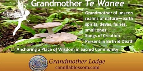Earth Spirits Grandmother Lodge with Te Wanee tickets