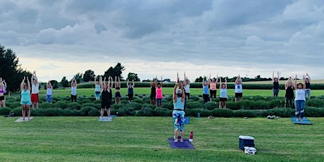 Kids Yoga in the Lavender Field tickets