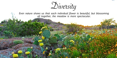 Nature Connection and Authentic Expression
