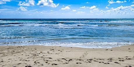 Beach Journaling & Underwater Clean Up tickets