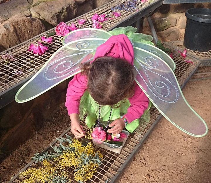 Fairies and Dragons Family Holiday Program image