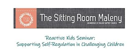 Reactive Kids Seminar: Supporting Self-Regulation in Challenging Children tickets
