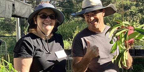 National Tree Day - Nature for Backyards plant giveaway - Marrickville tickets
