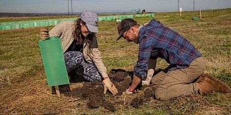 Glenthorne Community Planting Days tickets