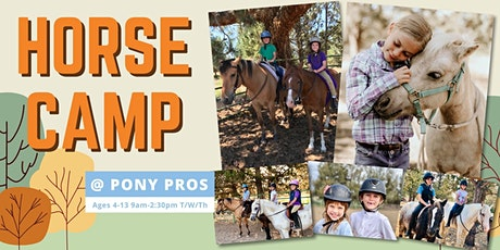 Horse Summer Camp - July 20, 21, 22 tickets