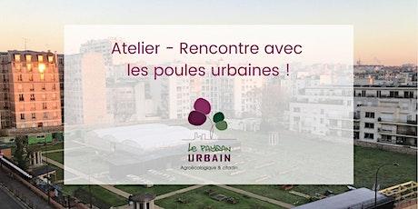 Rencontre avec les poules urbaines! billets