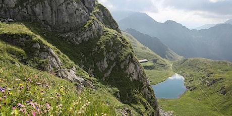 Trekking nelle verdi montagne della Carnia: Pramosio - Avostanis biglietti