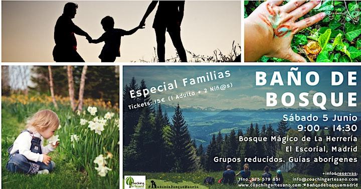 Baño de Bosque Familias sáb. 5 jun Bosque La Herrería El Escorial image