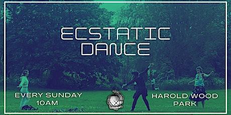 SUNDAY Ecstatic Dance in Essex tickets
