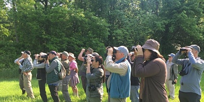 Small Group Birding: Monday, August 2, 7:30 am, Muscoot Farm