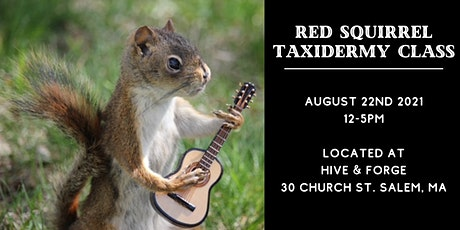 Red Squirrel Taxidermy Class tickets