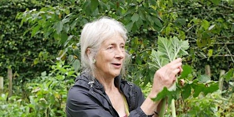Finding Wild Food with Experienced Forager Fi Martynoga tickets