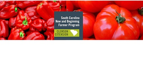Keeping Tomatoes and Peppers Growing and Producing tickets