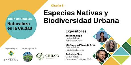 Especies Nativas y Biodiversidad Urbana entradas