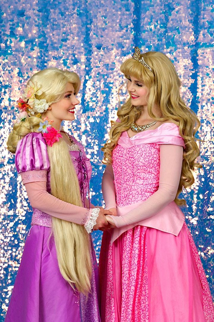 Birmingham VIP Princess Party image