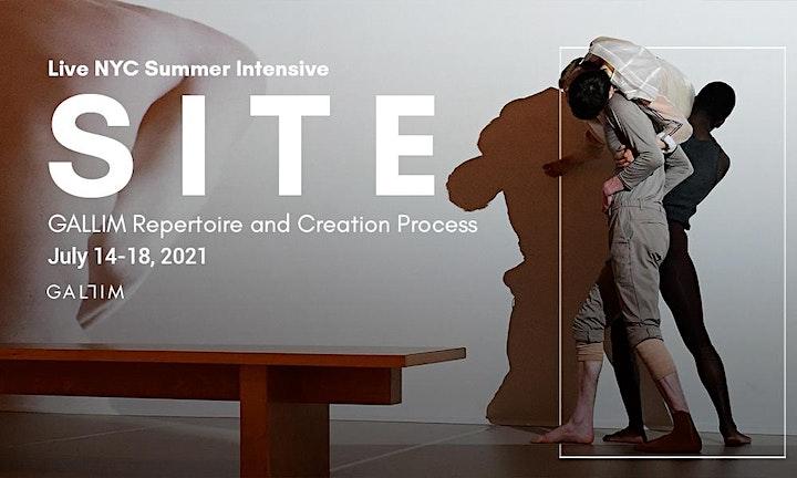 SITE: Site-Specific Processes and GALLIM Repertoire image