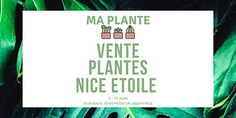 Vente Plantes Nice | Ma Plante billets