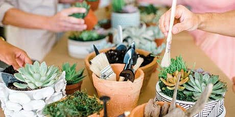 Succulent Potting Workshop Hosted By The Coastal Succulent tickets