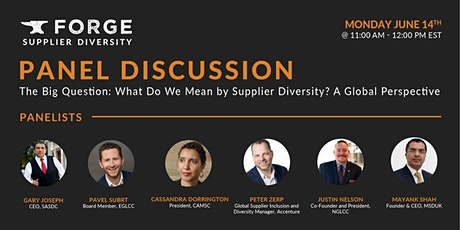Panel Discussion: What Do We Mean by Supplier Diversity? Global Perspective tickets