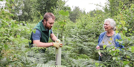 Volunteering in the Heart of England Forest - Get Involved Taster Event tickets