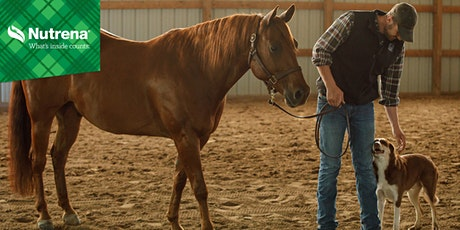 Nutritional Management of Equine Metabolic Diseases Virtual Seminar tickets