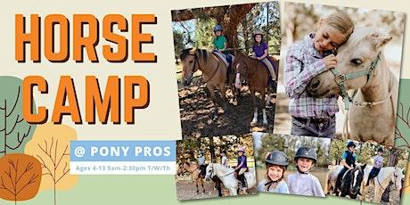 Horse Summer Camp - Aug 17, 18, 19 tickets