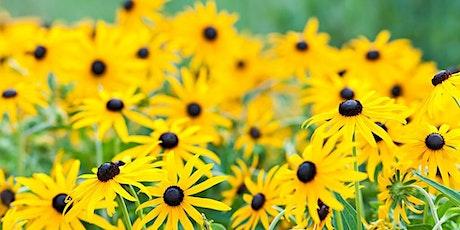 Using Citizen Science to Guide Your Gardening - Master Gardener Series tickets