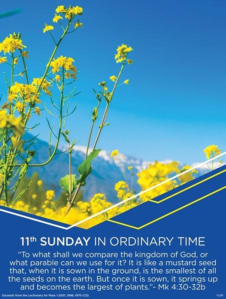 Mass, 11:00am, June 13th image