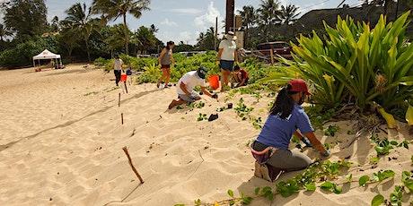 Paumalū (Sunset Beach Park) Volunteer Workday tickets