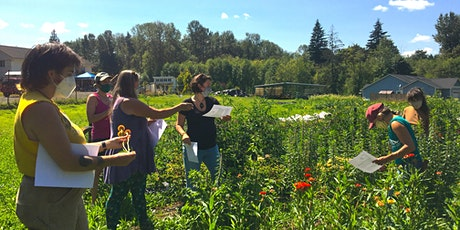 Herbal Infused Face Oil Workshop at The Duvall Herb Farm (IN PERSON) tickets
