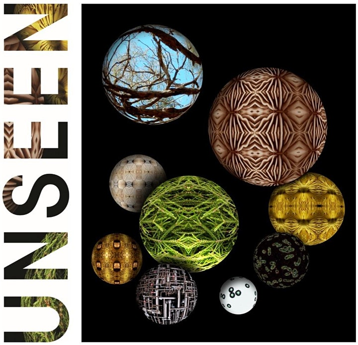 Unseen   Exhibition Opening image