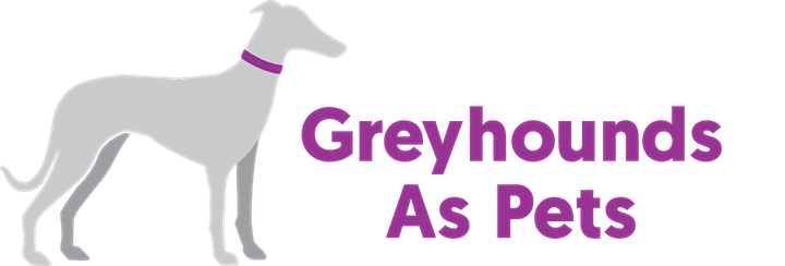 Greyhounds 101 image