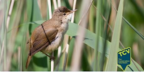 Bird Survey tickets