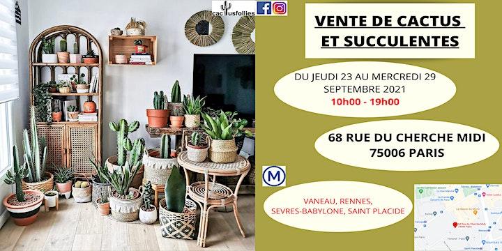 Image pour VENTE DE CACTUS ET SUCCULENTES PARIS 75006